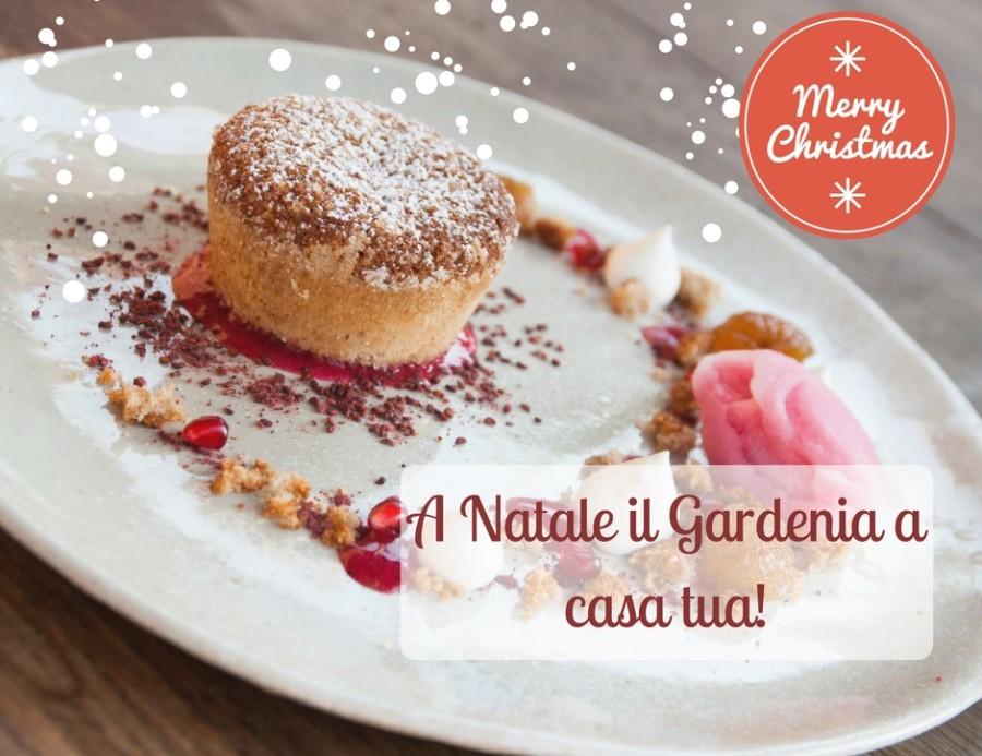 (Italiano) A Natale il gardenia a casa tua!